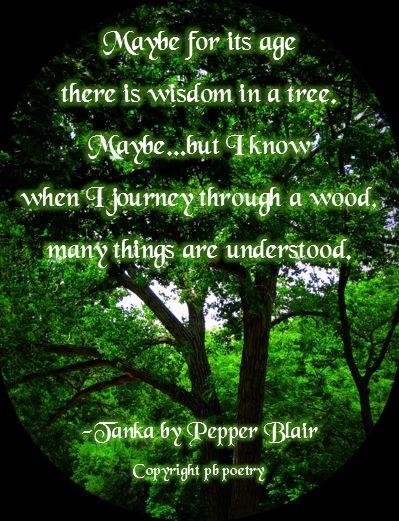 tanka poem template - 43 best haiku other poetry images on pinterest