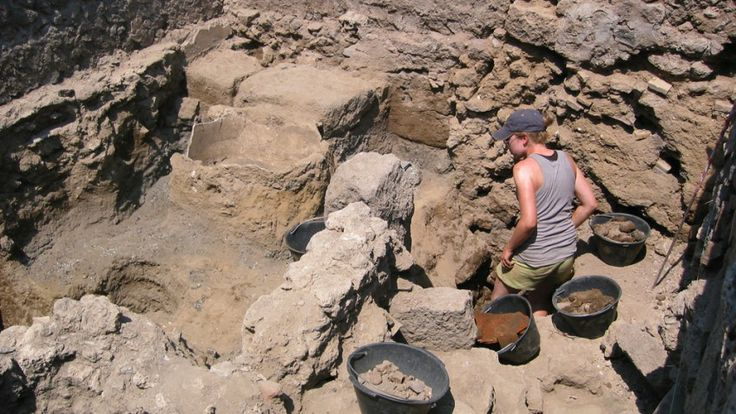 University of Cincinnati archaeologists are turning up discoveries in the famed Roman city of Pompeii that are wiping out the historic perceptions of how the Romans dined, with the rich enjoying delicacies such as flamingos and the poor scrounging for soup or gruel. #archaeology #archeology #archaeological