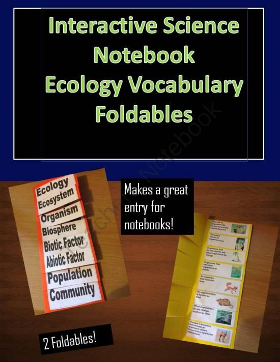 Science Vocabulary Foldable Ecology Terms from Digital Diva on TeachersNotebook.com -  (4 pages)  - Interactive Science Notebook - Ecology Vocabulary Foldable This document contains two vocabulary foldables for science notebooks!