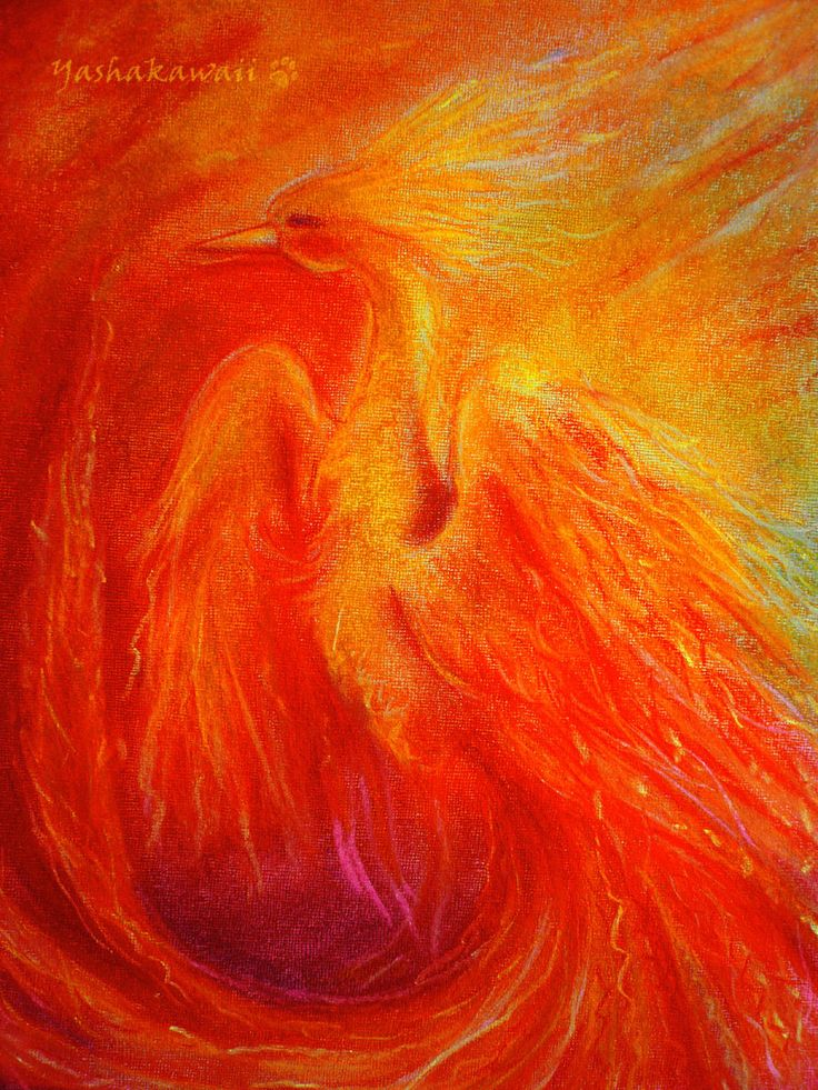 Phoenix by ~yashakawaii on deviantART