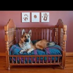Pinning this for the canvases and puppy bed. Great use for an old crib. And I would love puppy paw prints with ours in the nursery.