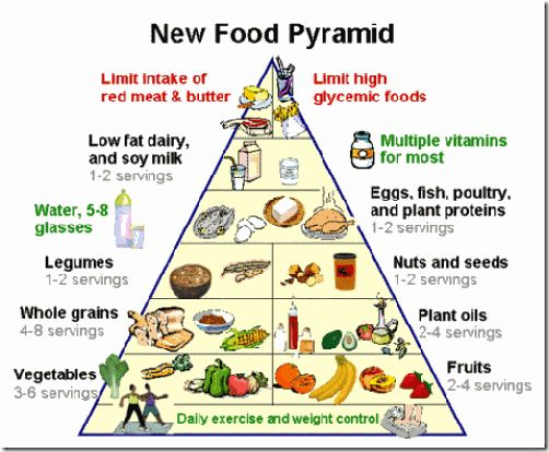Worksheets Food Pyramid Guide 1000 images about italian food guide on pinterest raw honey pyramid