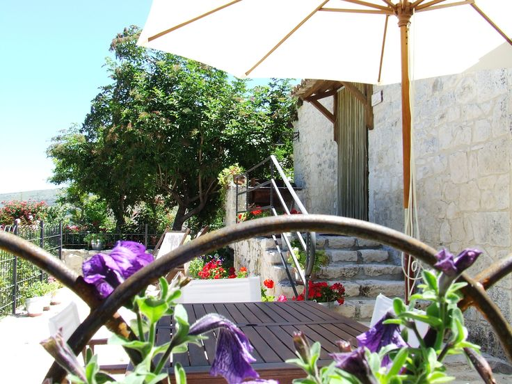 area riservata appartamento Lucertola Muralis