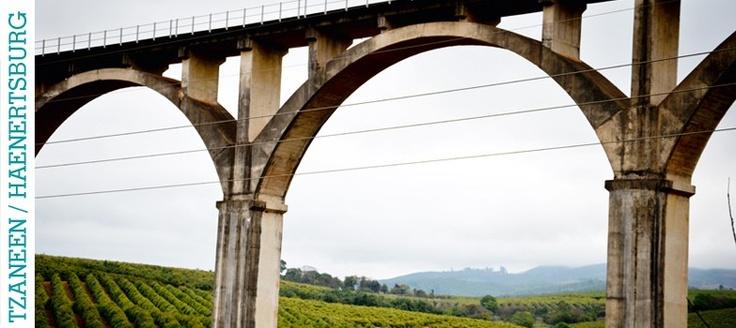 Louise Vorster - Tzaneen Bridge