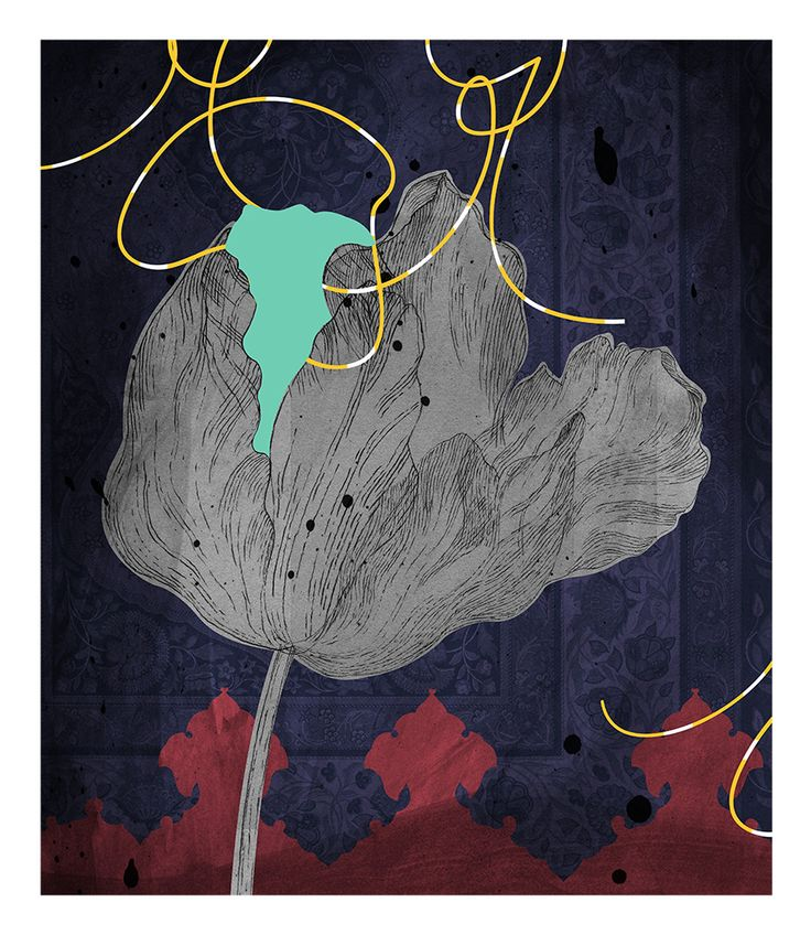 Kim Meek, Tulip II, 2013, from Dominion: an incomplete, unscientific and fanciful florilegium inspired by the library of JT Mackelvie