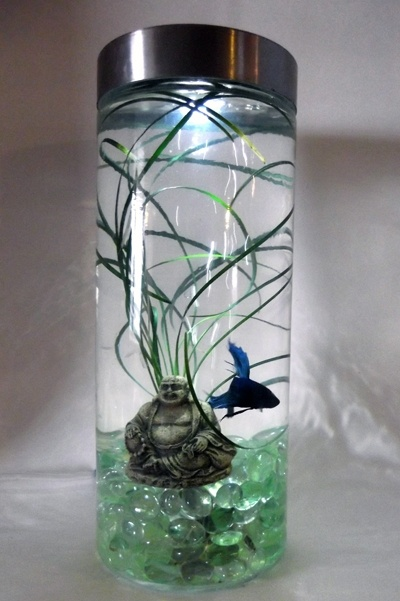 Buddha Bubbler Tank. Lighted with under gravel bubbler, live plant and a Betta.,  (just swap buddha for something else)
