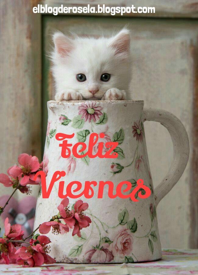 """"""" De Todo Un Poco """": Feliz viernes."""