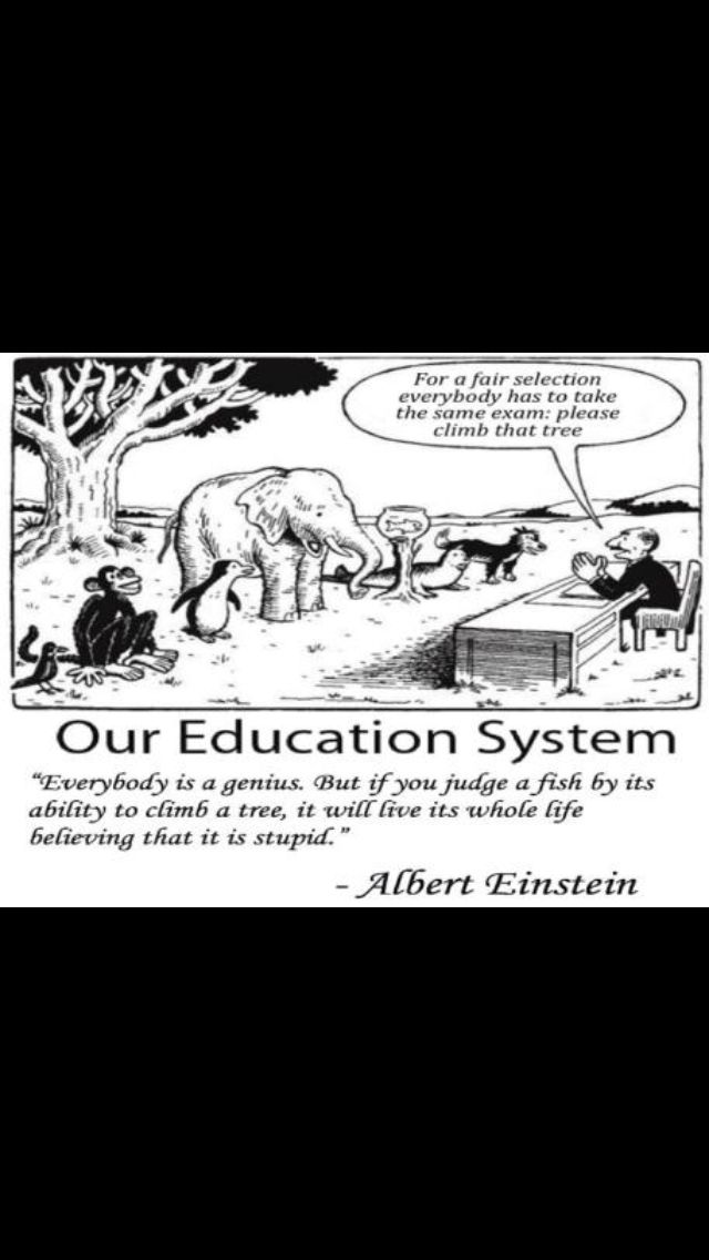 Pin By Jlo Leeb On Parenting Education System Albert Einstein