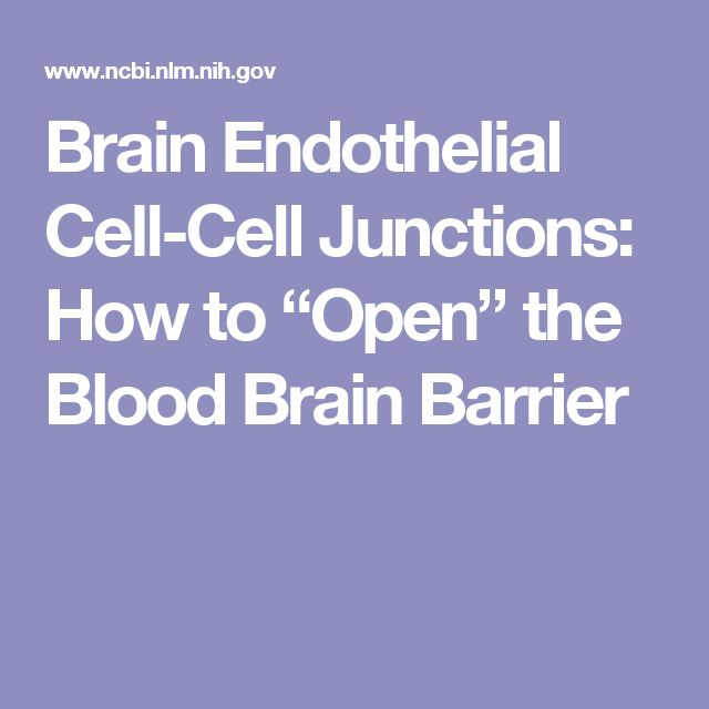 "Brain Endothelial Cell-Cell Junctions: How to ""Open"" the Blood Brain Barrier"