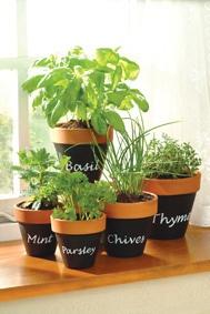 Terracotta pots sprayed using PlastiKote Chalkboard: Herb Pots, Chalkboards, Craft, Chalk Board, Chalkboard Paint, Herbs Garden