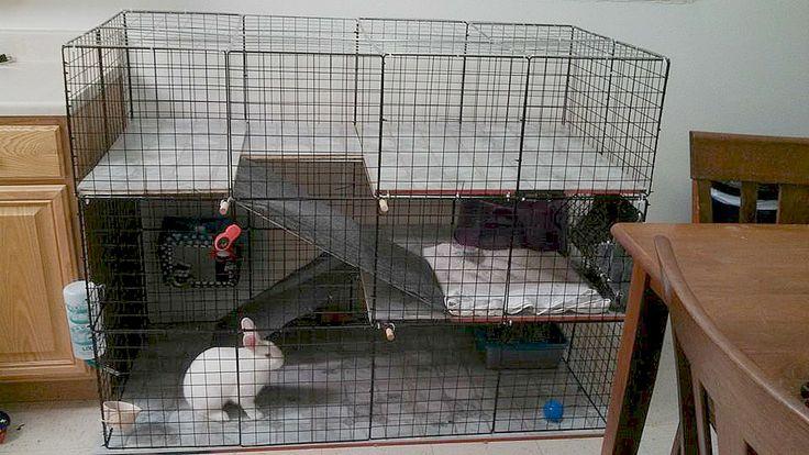 Diy Indoor Rabbit Cage Condo Bunny Cages Diy Bunny
