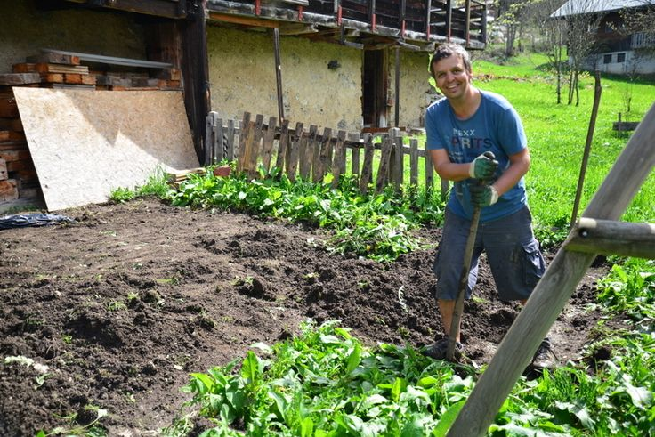 I found this image yesterday from May 2013, digging the veggie plot.  He wasn't as smiley after six weeks of digging up the horrendously deep routed weeds.  3 years on, we still battle with them but the veggies are winning...Chalet Cannelle, Chatel, France