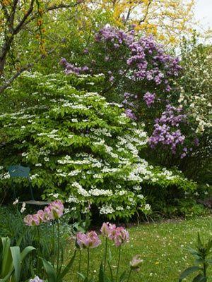 Les 25 meilleures id es de la cat gorie jardins de cottage for Jardin de cottage anglais