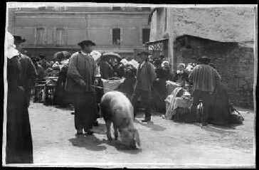 1 vue  - [Vannes. Foire aux bestiaux place Sainte-Catherine.] / David (éditeur de cartes postales). Editeur. (ouvre la visionneuse)