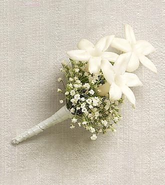 baby's breath Boutonniere