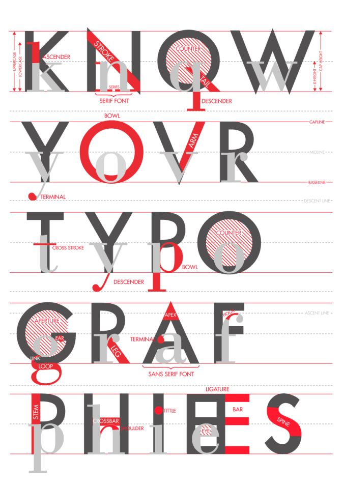 Anatomy of letters
