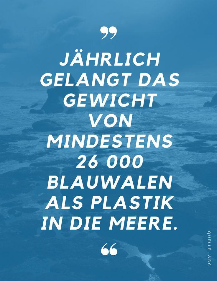 Pin Auf World Ocean Day Warum Die Meere Wichtig Sind