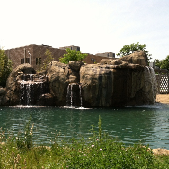 Roger Williams Park: 17 Best Images About Roger Williams Park & Zoo