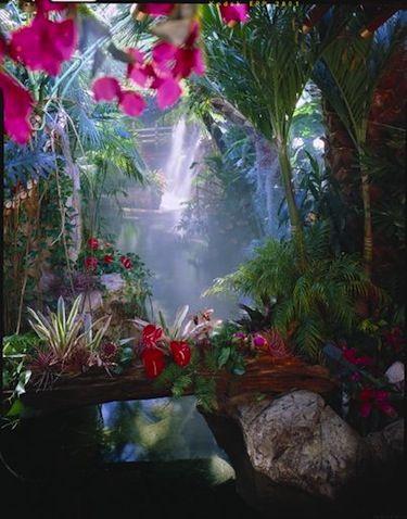 The Mirage Hotel's tropical atrium in Las Vegas