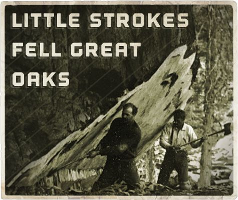 essay on little strokes fell great oakes Little strokes fell great oaks : school essays : college essays : essays : articles.
