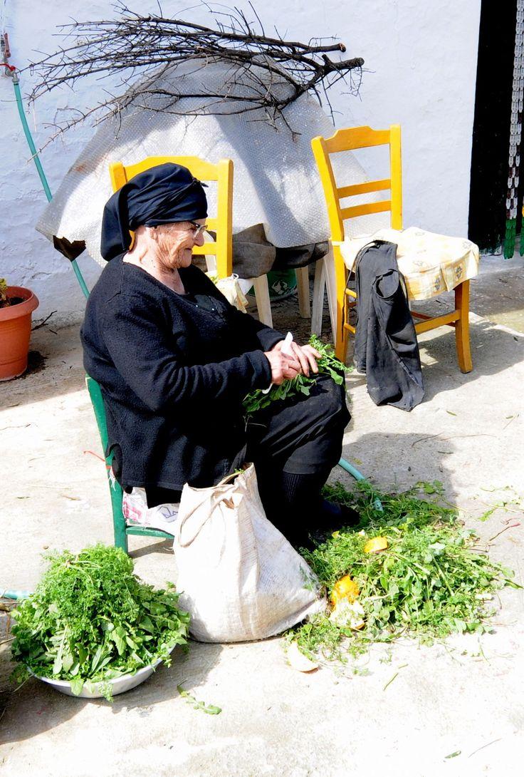 Cretan wild greens