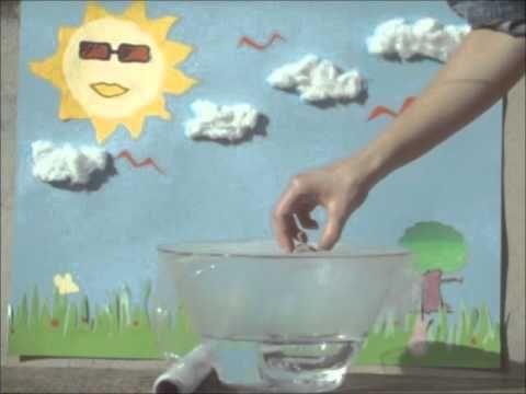 6. Experimento ciclo del agua.