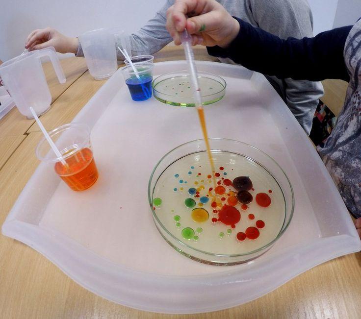#bakterie#eksperyment#hodowla#Klub#młodego#odkrywcy#harmonia#montessori