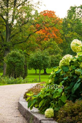Ann-Kristina Al-Zalimi, puutarha, garden, trädgård, träskändan puisto, träskända, träskändan kartanon puisto