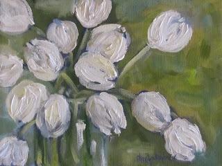 cheri wollenberg white tulips