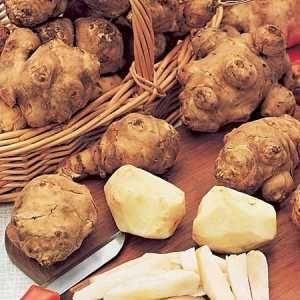 Root vegetables recipes for fall menus
