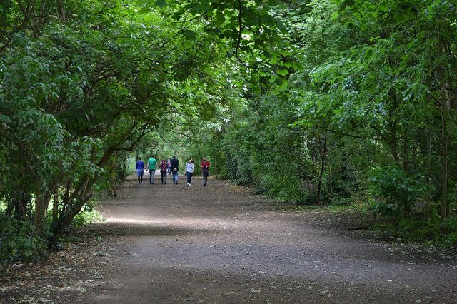 The Parkland Walk, Ally Pally to Finsbury Park