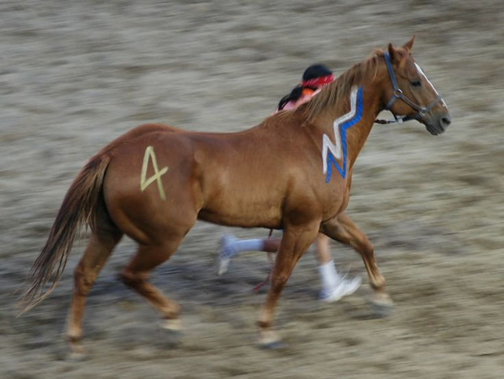 Native American Painted Horse