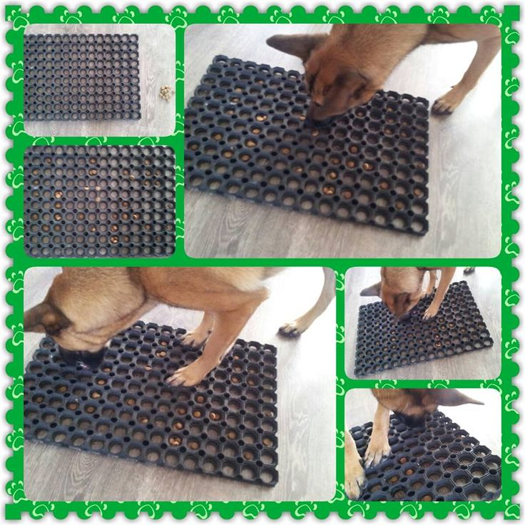 Plastic mat with holes put treat inside them and you got a dog toy :)