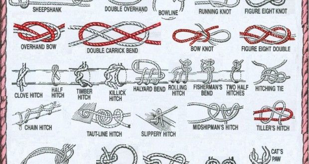 Forty Knots You Should Know: Handy Infographic