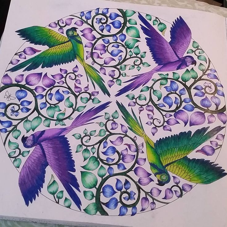 Love This Page If Youre Looking For The Top Coloring Books And Supplies Including Colored Pencils Gel Pens Watercolors Drawing Markers