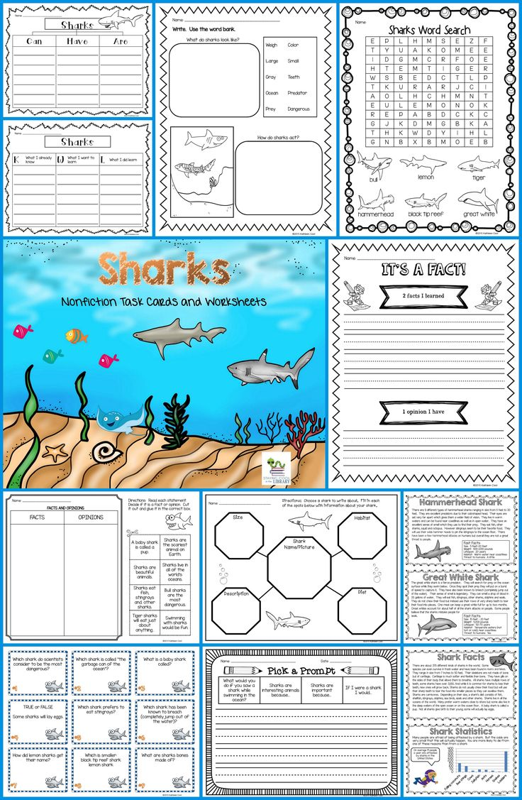 Sharks - Nonfiction Task Cards and Worksheets ...