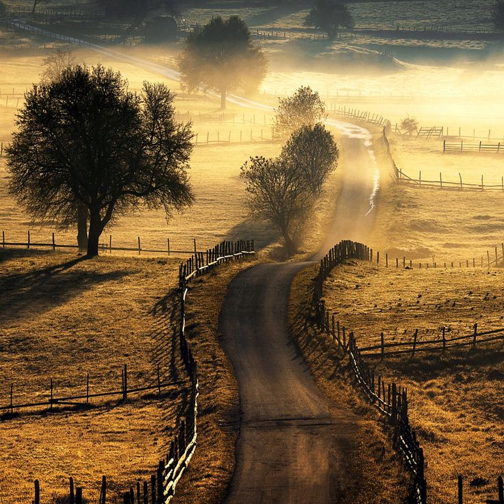 Country Road by Adnan Bubalo - Photo 224781203 / 500px