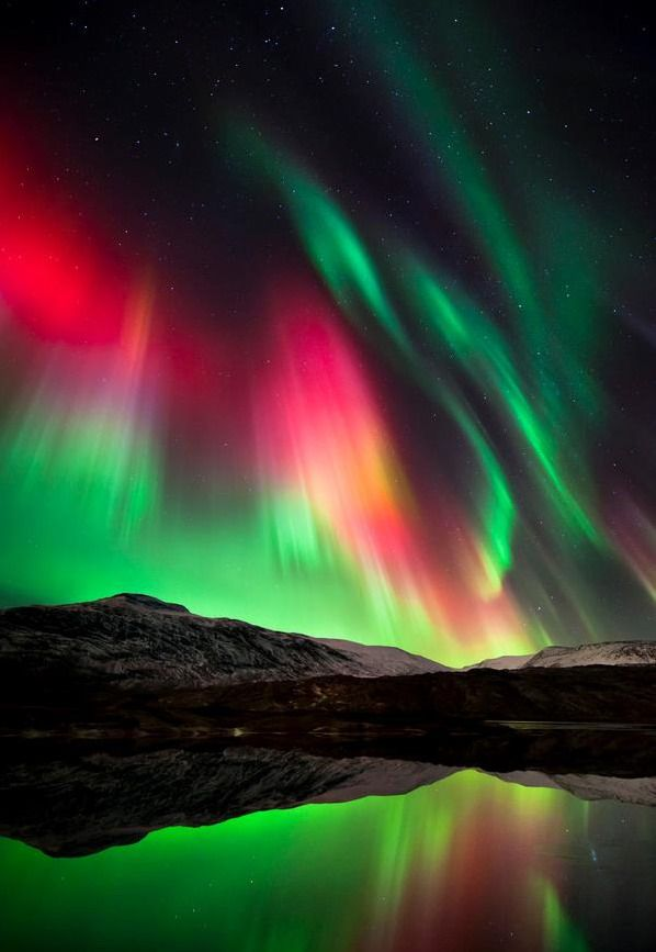 Norway | Aurora Borealis or Northern Lights in 2019 ...
