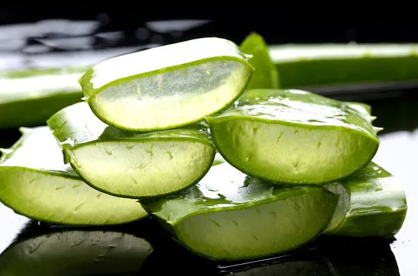 Using either the aloe vera plant or gel can be a soothing and cooling remedy for burns. You can also use aloe vera to treat wounds, skin infections, and dandruff.