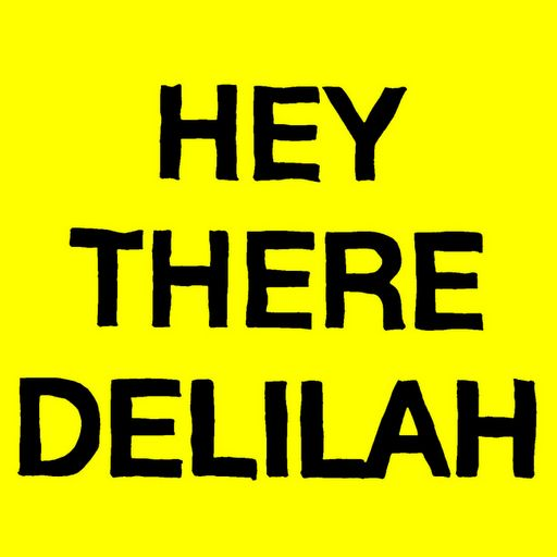 "Plain White T's - ""Hey There Delilah"" - YouTube <3"