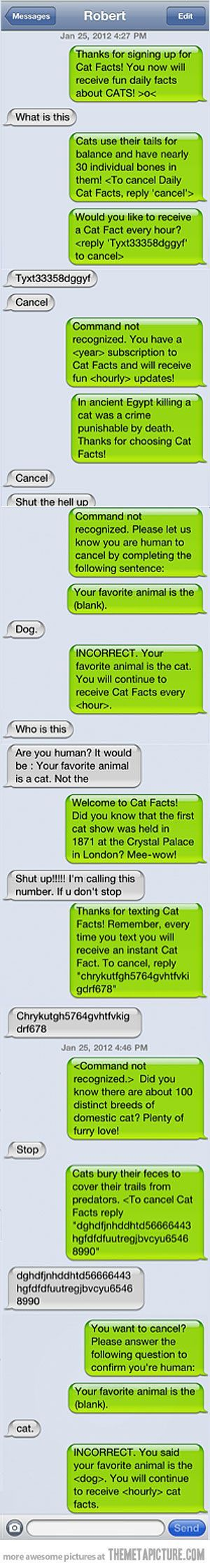 funny text message prank cats... I have a friend I could mess with for HOURS doing that.. I may need to change my number soon just to do it... But it is funny!!!