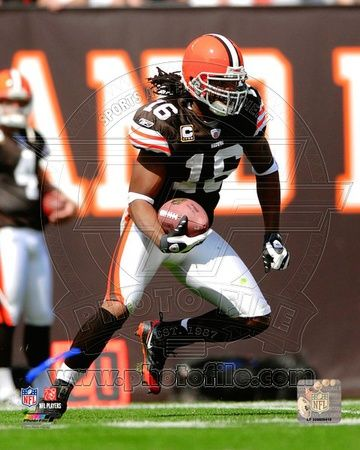 Cleveland Browns - Josh Cribbs Photo