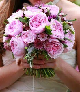 flowers4u.gr   : Garden Roses David Austin Luxury Collection -Μπουκ...