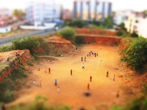 #tilt shift-ing cricket...    Share and Repin if you like this. Thanks