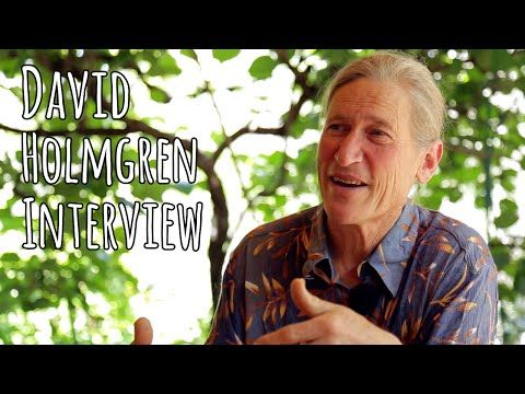 David Holmgren Interview on Permaculture, Energy Descent & Future Scenarios - The Permaculture Research Institute