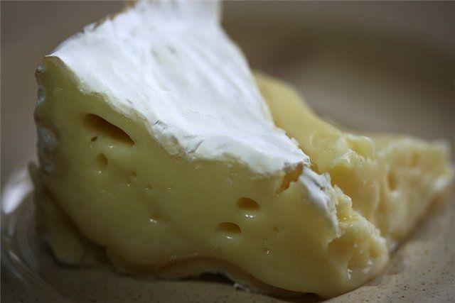 Сыр с плесневым грибком
