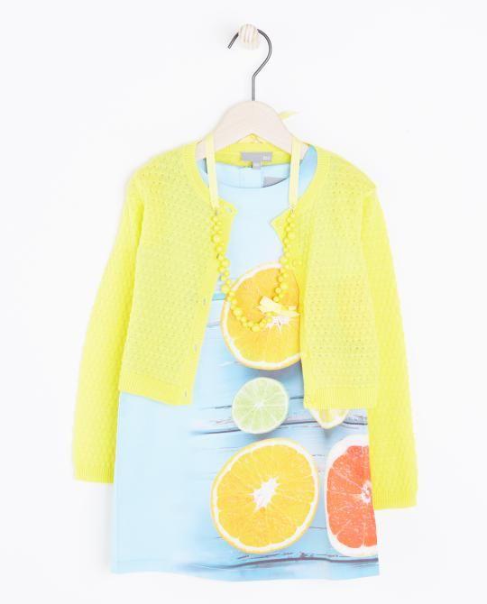 set-uit-3-delen-citrusvruchten
