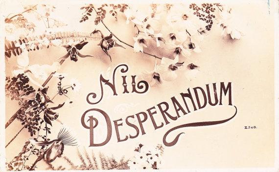 Nil desperandum family motto and mottos for Family motto tattoos