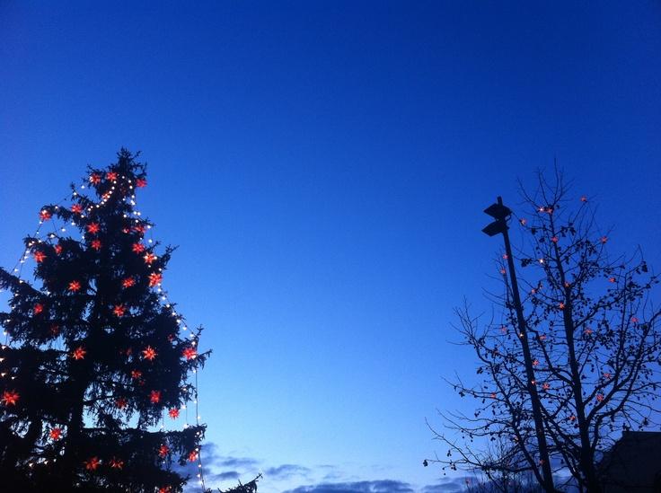 Christmas time in Cottbus! (Altmarkt, Cottbus - December 2011)