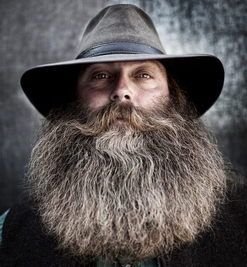 17 best images about beards on pinterest beards epic beard and thick beard. Black Bedroom Furniture Sets. Home Design Ideas
